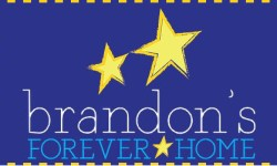 sundance-vacations-charities-brandons-forever-home logo